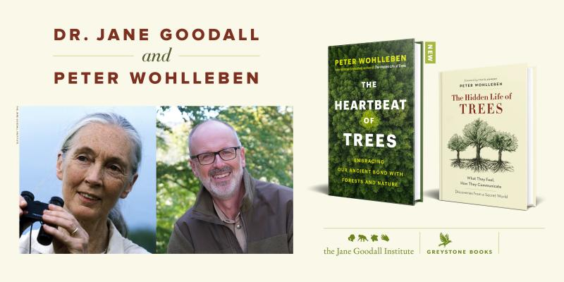 Event with Dr Jane Goodall